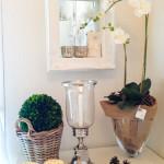 Edles Orchideen-DIY wie im Luxus-Hotel