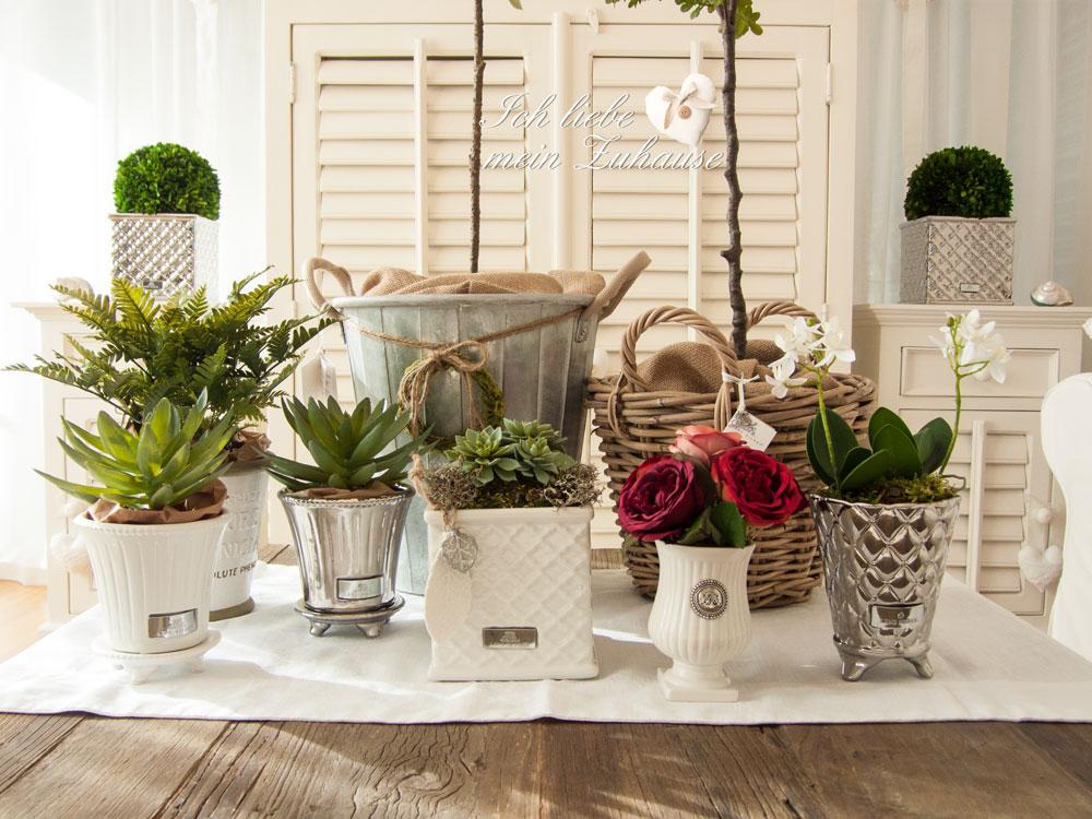 neue frische im januar wie dekoriere ich mit pflanzen ich liebe mein zuhause landhausstil. Black Bedroom Furniture Sets. Home Design Ideas